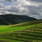 Terraced fields, Liptovská Teplička - Source: http://www.liptovskateplicka.sk/ Photo: Ivona Cimermanová