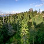 Chodník korunami stromov Bachledka Obrázok 3