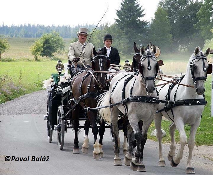 Kočiarové múzeum a jazdecké zážitky Poprad - Matejovce